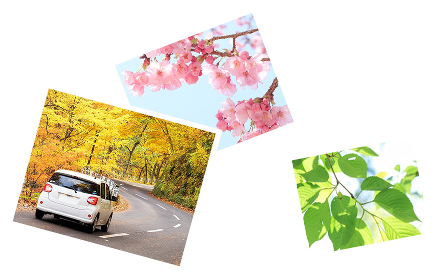 ペーパードライバースクール北関東では、群馬県・栃木県・埼玉県・茨城県・長野県にてペーパードライバーのための出張型自動車教習を行っております。